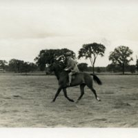 Edward H. Bennett Horseback Riding